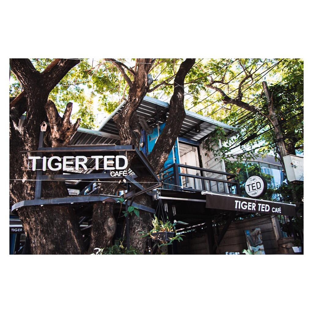 Tiger TED Cafe on Huay Kaew Road