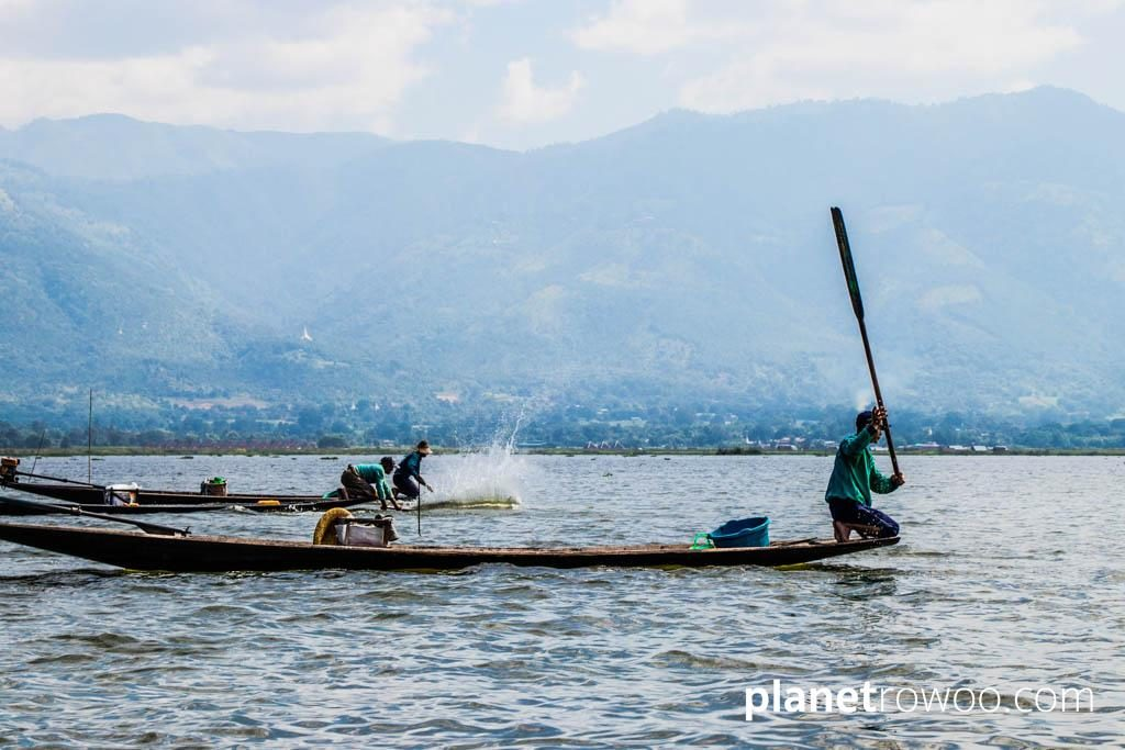Beating the water to steer the fish on Inle Lake