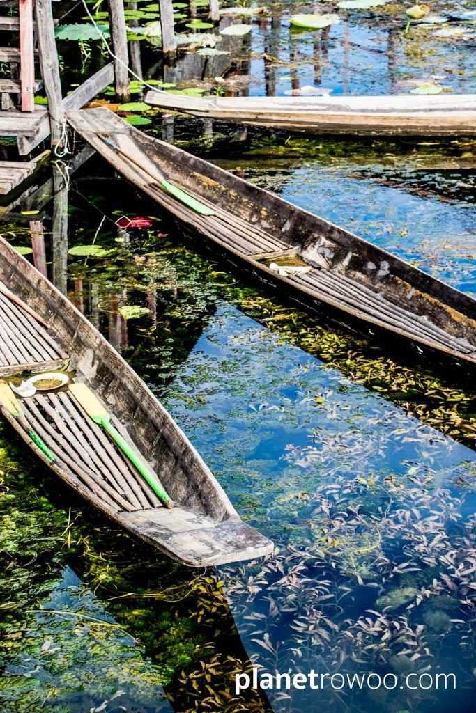 Village boats tethered to an Inle Lake village jetty