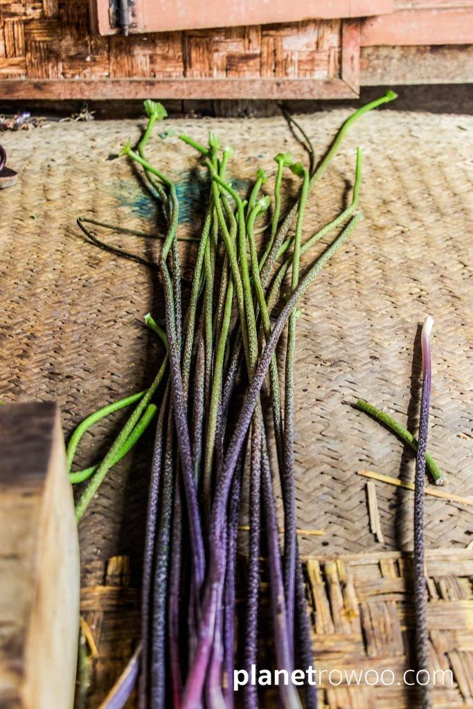 Lotus plant stems, Inpawkhone weaving village
