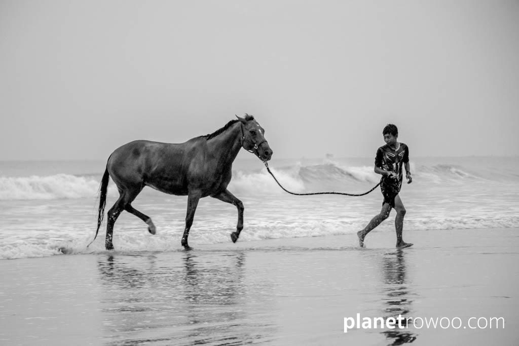 A horse from Colts Polo & Riding leaves the sea at Khuk Khak beach Khao Lak