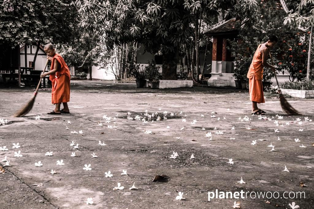 Novice monks sweep the temple grounds at Wat Sop Sickharam, Luang Prabang