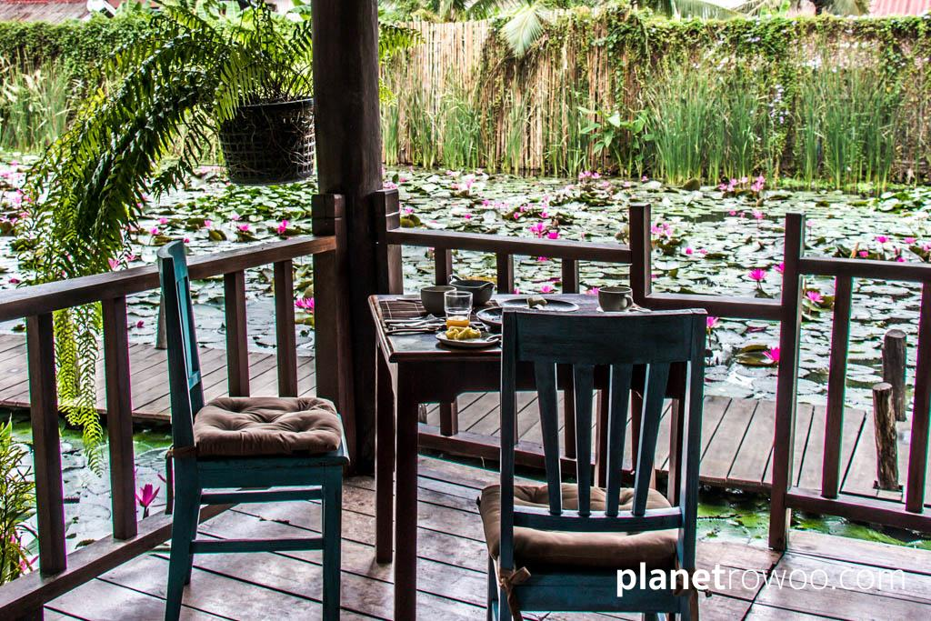 Breakfast overlooking a UNESCO classified lily pond at Maison Dalabua