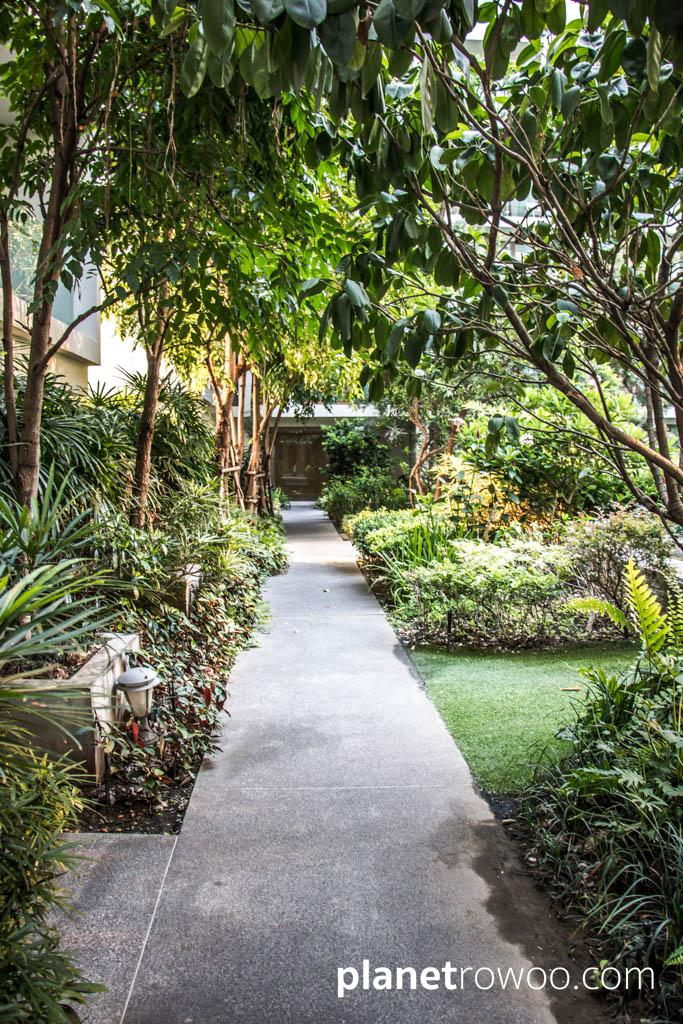 A tropical garden links the buildings of the Nimmana condo